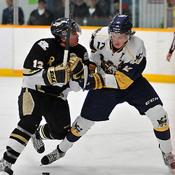 TRENTON, ON - Nov 9: Ontario Junior Hockey League game between Whitby Fury and Trenton Golden Hawks. Loren Ulett #13 of the Trenton Golden Hawks checks Jack Lewis #12 of the Whitby Fury during first period game action..(Photo by Shawn Muir / OJHL Images)