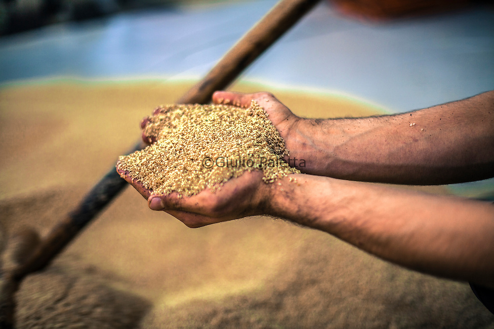 the main activity here is the agriculture. In particular the production of Tahini
