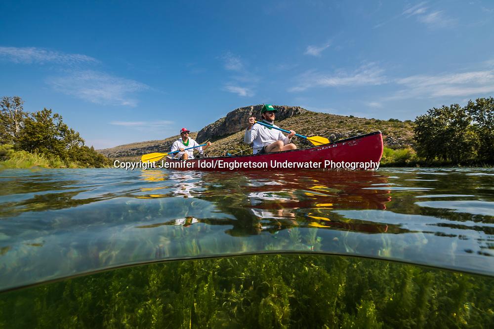 Underwater Scene<br /> <br /> Jennifer Idol/Engbretson Underwater Photography