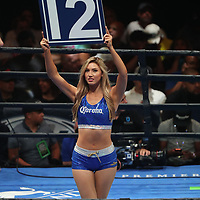 A ring card girl is seen prior to the 12th round of the Andre Berto versus Devon Alexander Premier Boxing Champions fight on Saturday, August 4, 2018 at the Nassau Veterans Memorial Coliseum in Uniondale, New York.  (Alex Menendez via AP)