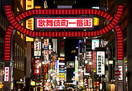 A red gate of neon lights and a profusion of neon signs in Kabukicho, an entertainment district in Tokyo, Honshu, Japan