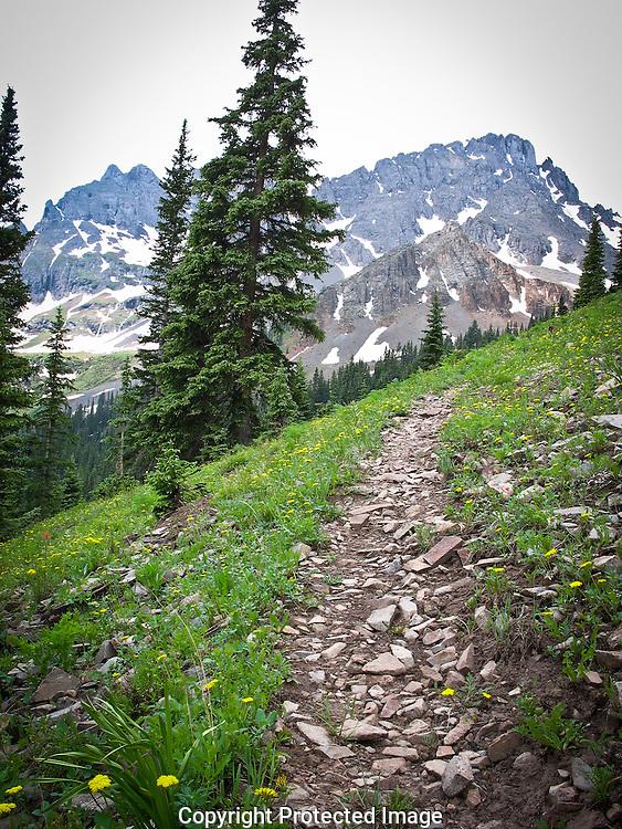 Grant Swamp Pass Trail