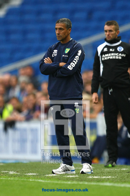 Picture by Paul Chesterton/Focus Images Ltd +44 7904 640267<br /> 30/07/2013<br /> Norwich Manager Chris Hughton during the Pre Season Friendly match at the American Express Community Stadium, Brighton and Hove.