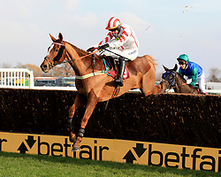 Red Infantry ridden by Tom O'Brien clears the last fence and wins the Betfair Each Way Edge Handicap Steeple Chase during Betfair Chase Day at Haydock Park, Newton-Le-Willows.
