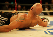 Picture by Alan Stanford/Focus Images Ltd +44 7915 056117<br /> 16/11/2013<br />  Frankie Borg is knocked out during their middleweight bout at Glow Bluewater, Greenhithe.