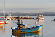 A tour boat leaves Mirissa harbour in the early morning.<br />