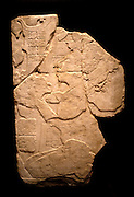 MEXICO, MAYAN, TABASCO; relief of a priest offering cacao plant