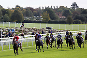 AINSDALE (10) ridden by Ben Curtis and trained by Karl Burke winning The TSG and Brewin Dolphin Nursery Stakes over 5f (£15,000)  during the October Finale Meeting at York Racecourse, York, United Kingdom on 11 October 2019.