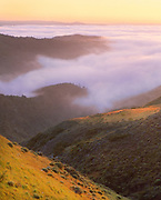 0603-4005 ~ Copyright: George H.H. Huey ~  Morning fog over upper Christy Canyon, with Santa Rosa Island in distance.  Santa Cruz Island Preserve, The Nature Conservancy.  Santa Cruz Island, Channel Islands, California.
