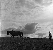 Ploughing at Stoneyford, 05/07/1953<br />