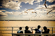 Kids throw bread pieces to seagulls on the boardwalk of coney Island in Brooklyn, New York, 2010.