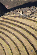 Q'allaqasa, the citadel of Inca Písac lies atop a hill at the entrance to the valley. The Inca's agricultural terraces are still in use today. They enabled them to produce more food than would normally be possible at 11,000ft. The narrow rows of terraces are thought to represent the wing of a partridge (pisaca). Pisac, Peru, 2008