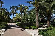 Ramat Hanadiv gardens near Zichron Ya'acov, Mount Carmel, Israel