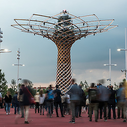 Expo Milano 2015 - Best of Pavillions