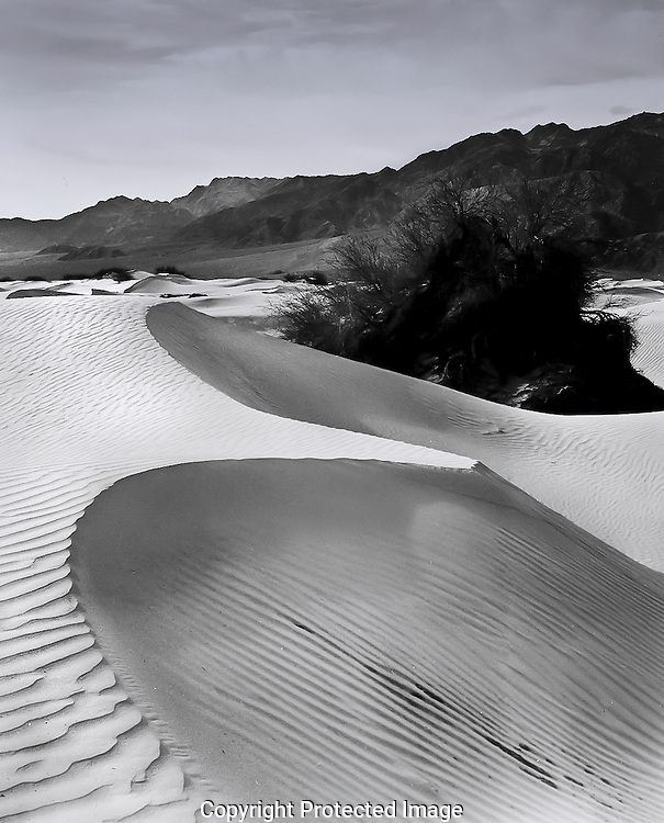 Death Valley sand dunes in early morning light