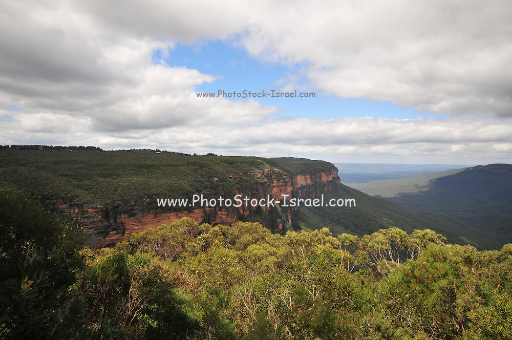 Australia, New South Wales, Katoomba, Blue Mountains (Near Sydney)