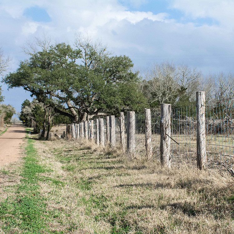 Posts made of Cedar wood line the farms lands and properties of residents.