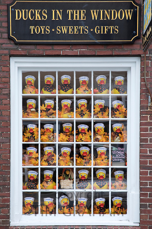 Ducks in the Window store in High Street at Chatham, Cape Cod New England, USA