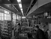 09/03/1961<br />