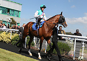 Jockey Jim Crowley on Crisscrossed in the parade ring before the 3.20 race at Brighton Racecourse, Brighton & Hove, United Kingdom on 10 June 2015. Photo by Bennett Dean.