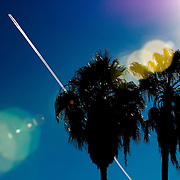 A contrail is seen over palm trees in Phoenix, Arizona.