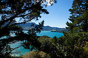 Queen Charlotte Track, Marlborough Sounds, South Island, New Zealand