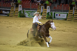 Josiane Gauthier, (CAN), Ju Juzz Gunslinger - Team Competition and 1st individual qualifying  - Alltech FEI World Equestrian Games™ 2014 - Normandy, France.<br /> © Hippo Foto Team - Dirk Caremans<br /> 25/06/14