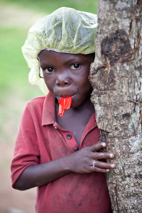 A boy chews on a hibiscus flower in Caye Michel on the Massif de la Hotte, Haiti