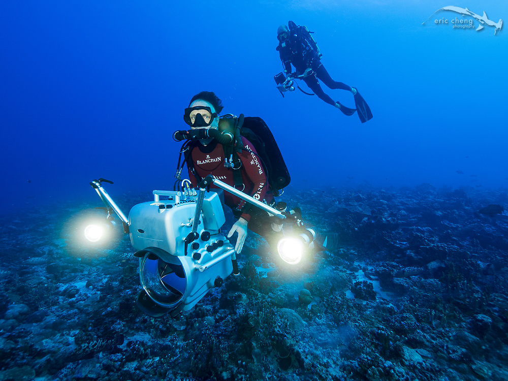 Roberto Rinaldi, one of the world's foremost underwater 3D cinematographers, dives with a prototype Seacam underwater housing that holds two Canon C300 or C500 cameras. This 3D camera rig is on of the first to shoot 3D wide-angle behind a dome port, and can shoot in 4K. Fakarava south pass (Tomakohua), French Polynesia.