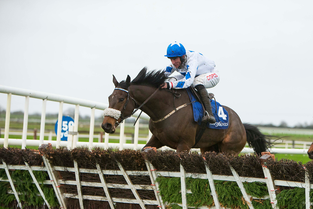 "Fairyhouse Racing, 1st January 2016<br /> Davy Russel on ""Don`t Tell No One"" takes the last hurdle and goes on to win the Happy New Year Maiden Hurdle Race at Fairyhouse<br /> Photo: David Mullen /www.cyberimages.net / 2016"