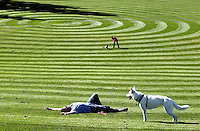 Serif Terziler, of Fircrest, soaks in some sun with his dog Elle Noel on the freshly mowed great lawn at the entrance of Point Defiance Park, in Tacoma, September 29, 2011.  Park regular Vanessa Smith, background, said she and her daughter Summer Dougherty, 2, typically visit the ducks and flower gardens and on Thursday they were attracted to the patterns on the grass.(Janet Jensen/Staff photographer)