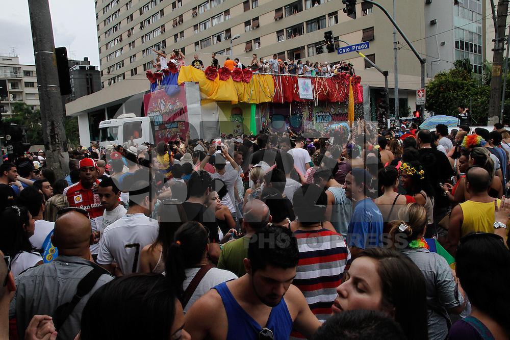 SAO PAULO, SP, 23.02.2014 - BLOCO DE RUA CARNAVAL - Academicos do Baixa Augusta anima os foliões no centro de São Paulo na tarde deste domingo (23), com machinhas de carnaval. (FOTO: Amauri Nehn / Brazil Photo Press).