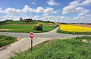 Frankrijk, Mont-saint-Eloi, 11-5-2013Glooiende velden met koolzaad in het gebied van de slag aan de Somme.Foto: Flip Franssen/Hollandse Hoogte