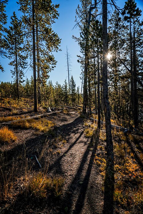 """After spending the night by Ice Lake, we got to enjoy the walk back to our car.  The heat of the sun was warming up the nippy feeling of that morning.  It was indeed, a """"morning glory""""."""