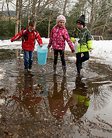 """Warmer temperatures make for good """"sap collecting"""" for Brent Howard, Alison Nutter and Jacoby Drouin as they bring sap back to their new sap house at Gilford Elementary School.  (Karen Bobotas/for the Laconia Daily Sun)"""
