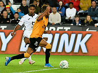 Football - 2019 / 2020 EFL Carabao (League) Cup - Second Round: Swansea City vs. Cambridge United<br /> <br /> Wayne Routledge of Swansea City  \sc6\, at Liberty Stadium.<br /> <br /> COLORSPORT/WINSTON BYNORTH