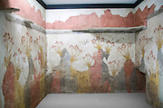 spring fresco at the National Archaeology Museum, Greece, Athens