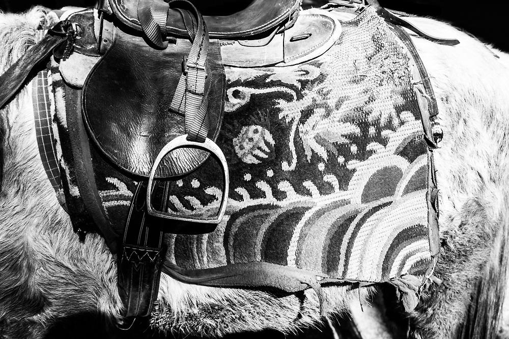 A horse and saddle form Bhutan
