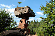Naturpark Pfälzerwald..Teufelstisch....