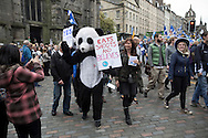 A man in a panda costume marching down the Royal Mile during a pro-Independence march and rally in the Scottish capital. The event, which was staged in support of the pro-Independence movement, was attended by an estimated by approximately 30,000 people. The referendum to decide whether Scotland will become an independent nation will be staged on 18th September 2014.