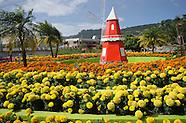 Feria de Las Flores en Tierras Altas, Chiriquí - Boquete