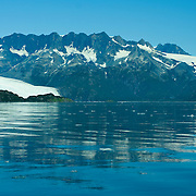 Holgate Glacier calves into Aialik Bay in Kenai Fjords National Park Alaska