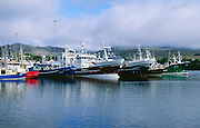 Fishing boats at Castletownbere, County Cork, Ireland