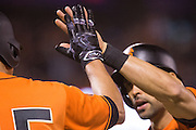 San Francisco Giants left fielder Angel Pagan (16), right, high fives San Francisco Giants starting pitcher Matt Moore (45) after scoring a run in the third inning against the St. Louis Cardinals at AT&T Park in San Francisco, Calif., on September 16, 2016. (Stan Olszewski/Special to S.F. Examiner)