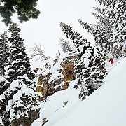 Andrew Whiteford gets the goods in-bounds at Jackson Hole Mountain Resort.