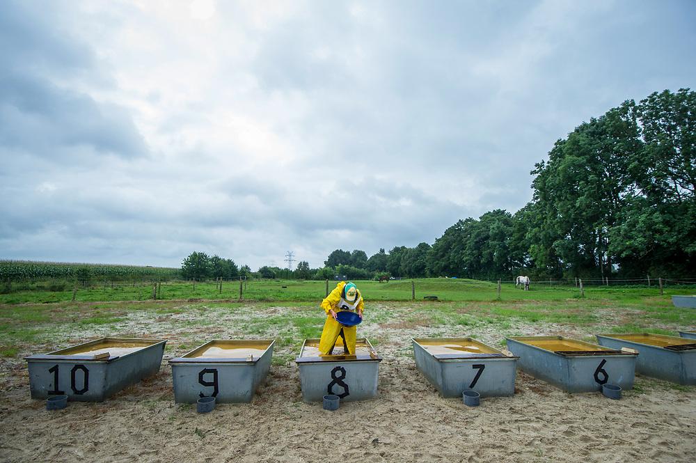 Foto: Gerrit de Heus. Duitsland. Bunde. 20-08-2017. Nederlands Kampioenschap (NK) goudpannen.
