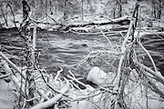 The raging Patapsco River in Oella, Maryland after a blizzard. A black and white photograph.