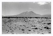 Procesion en fiesta de religiosa en Ayquina, region de Antofagasta.<br /> Impresiones de alta calidad en papel fotografico profesional de larga duracion.<br /> Diversos tama&ntilde;os.<br /> Todas las fotografias de Patricio Valenzuela Hohmann