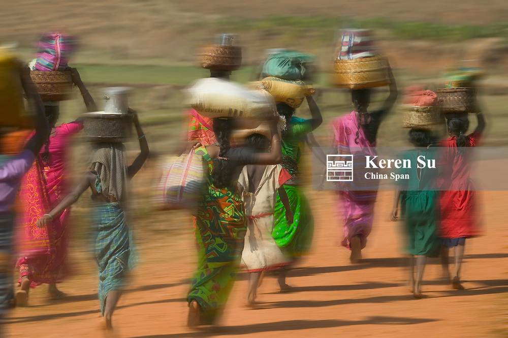Hill tribespeople carrying loads on head walk to market early in the morning, Orissa, India