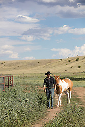 cowboy and his horse on a ranch